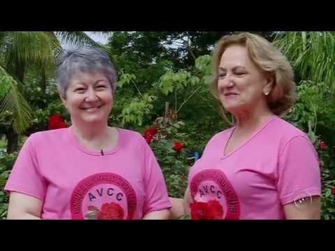 Jales - Assista o vídeo emocionante da TV TEM, de Cidinha Iglesias, 'Da dor ao Amor