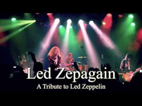 Led Zepagain promo