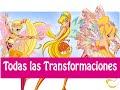 Winx Club - Todas Las Transformaciónes de Stella! Español Latino