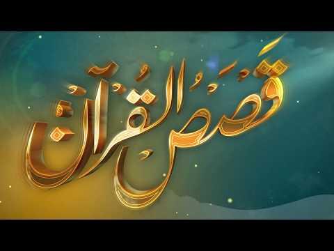 الحلقة (14) برنامج قصص القرآن
