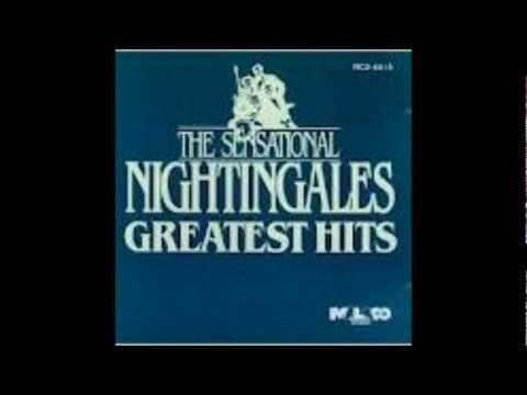 Sensational Nightingales At The Meeting