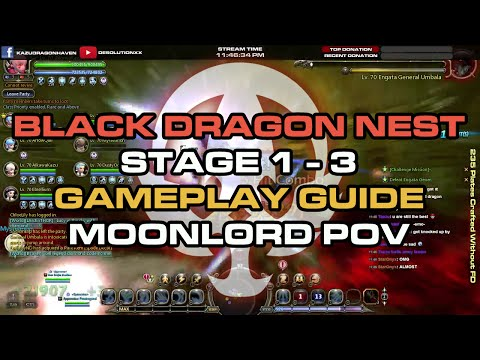 Black Dragon Nest - Stage 1 - 3 Gameplay Guide ; Moonlord POV - Dragon Nest SEA