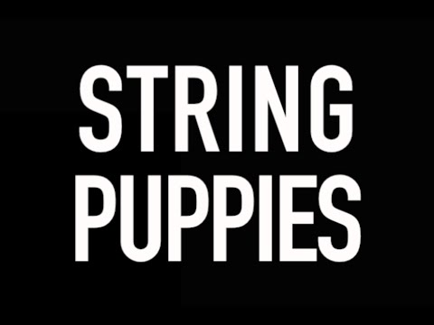 STRING PUPPIES - Official YouTube Channel TRAILER