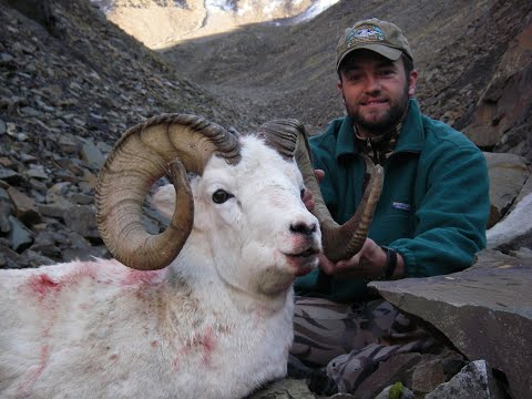 55-Mile Ram, Alaska Dall Sheep Hunting, MDMM Season 4, Episode #8