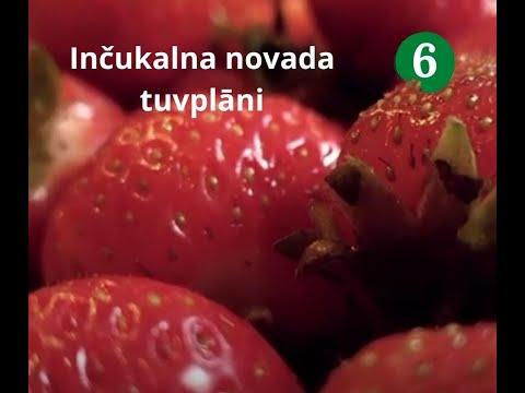 Inčukalna novada tuvplāni Nr.6