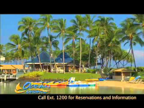 Big Island Snorkel Adventure
