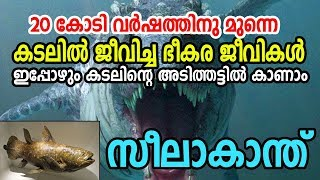 Video Coelacanth Still alive |40 കോടി വര്ഷം മുമ്പ്  ഉള്ള  ജീവികള് ഇപ്പോഴും ഉണ്ട് |Unbelievable Secrets MP3, 3GP, MP4, WEBM, AVI, FLV Oktober 2018