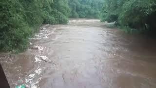 banjir ciliwung