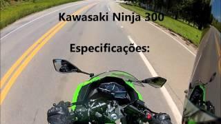 10. Kawasaki Ninja 300 - TOP SPEED (HD)
