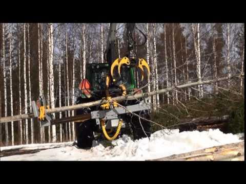 40LFe birch aspen spruce