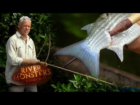 Jeremy Tries His Hand At Bow & Arrow Fishing | SPECIAL EPISODE! | River Monsters