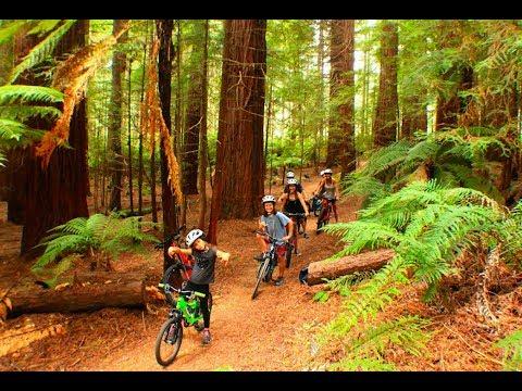 Family Mountain Biking Rotorua: The Best Outdoor Adventure in Rotorua (видео)