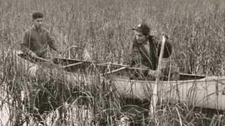 Sagkeeng Wild Rice Harvest