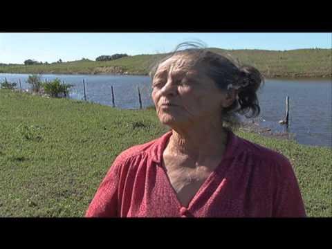 Salinização do rio Paraíba do Sul afeta a produção agropecuária - Jornal Futura - Canal Futura