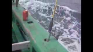 Pescaria  São Sebastião 21 Setembro 2013