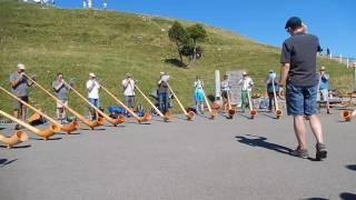 スイス発 リギ・クルム山頂でアルプホルンを披露!【スイス情報.com】