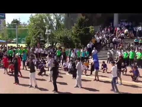 2015名古屋中学校 名古屋高校 文化祭(愛校祭) 5年K組 LMFAO - Party Rock Anthem フラッシュモブ