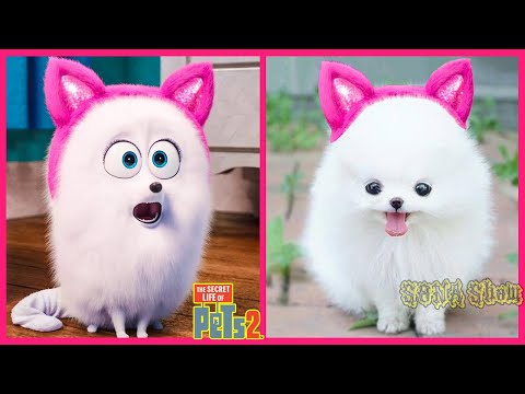 The Secret Life Of Pets 2 IN REAL LIFE 💥 All Characters | WANA Plus