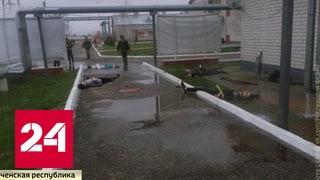 Вылазка террористов в Чечне: бойцы Росгвардии остановили бандитов ценой жизни