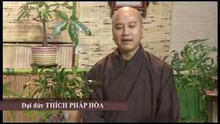 Người Để Thương 1 - Thầy. Thích Pháp Hòa trên VietfaceTV