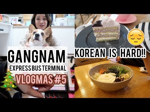 Gangnam & Express Bus Terminal | I NEED TO LEARN KOREAN!! | Vlogmas Day 5