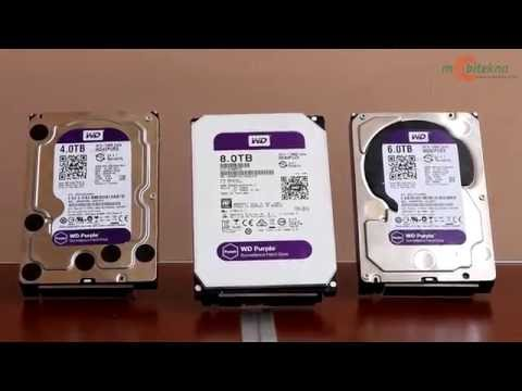 Mobitekno Review: WD Purple