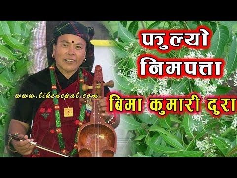 (Fulyo Nimpatta - Superhit Lok Geet By Bima Kumari Dura...6 min, 30 sec)