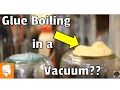 Does Wood Glue Boil in a Vacuum Chamber??