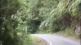 Fraser Hill Malaysia  city pictures gallery : fraser hill road - Pahang - Malaysia