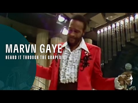 Live Music Show - Marvin Gaye