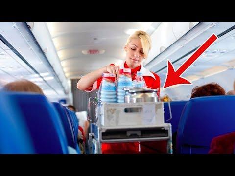 العرب اليوم - شاهد: الطلب الأكثر إزعاجًا لمضيفة الطيران