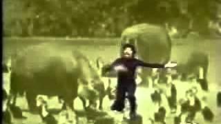 Raul Seixas - Eu nasci há 10 mil anos atrás