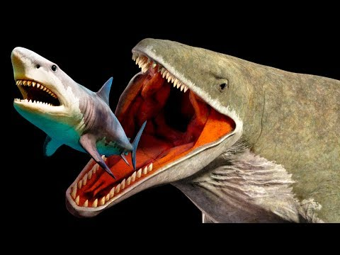 Mariana Trench Creatures That Are Way Scarier Than Megalodon - Thời lượng: 11 phút.