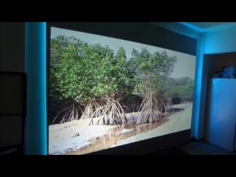 BUILD THE PERFECT PROJECTOR SCREEN NO PRO'S NEEDED!