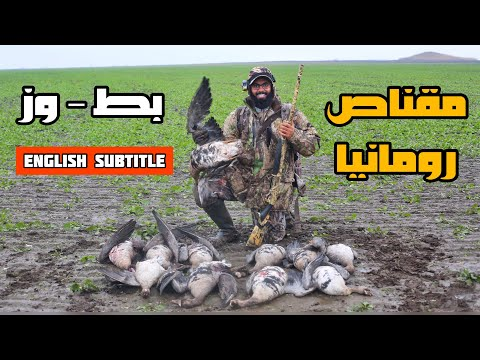 رحلة مقناص بط و وز 2 في رومانيا 🇹🇩 - احمد مُندي  duck and goose hunting in romania - Ahmed Mundi