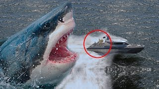 Video 7 Real Megalodon Sightings Caught On Camera MP3, 3GP, MP4, WEBM, AVI, FLV Agustus 2018