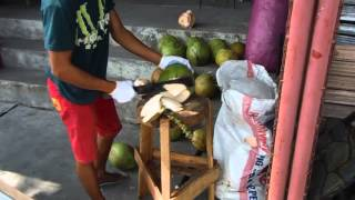 Mabalacat Philippines  city photo : Filipino Man Cutting the Husk from Coconut - Mabalacat Philippines