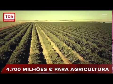 PRODER - 4.700 MILHÕES € PARA AGRICULTURA