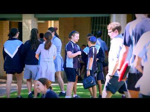 Jewish Life and Learning at Carmel