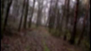 Video Cesta