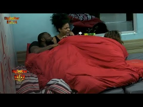 Day 51: Tease And Gossip | Pepper Dem: Big Brother | Africa Magic