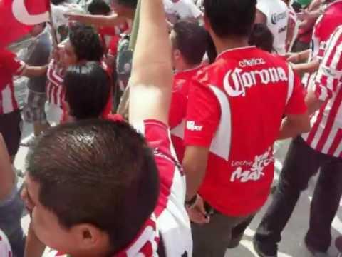 comando rojiblanco Necaxa en Morelos vs pumas - Comando Rojiblanco - Club Necaxa
