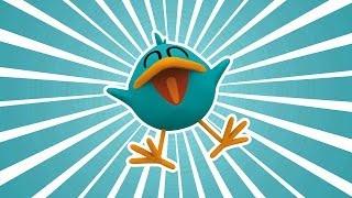 Pocoyo - The Best Moments of Baby Bird!