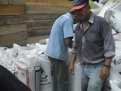ensilaje en bolsa - Bolsa plástica para empacar silos Excelente calidad buen precio Calibre 6 o 8 micras Color negra Capacidad 50 kilos Alto 120 centímetros Ancho 60 centímetros...