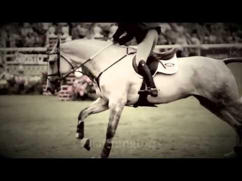 equitazione - tributo