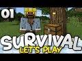 A FANTASTIC START! - Survival Let's Play Ep 01 - Minecraft Bedrock (PE W10 XB1)