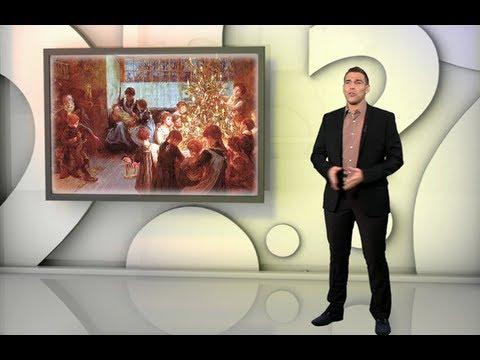Témoignage de D'où vient la tradition du sapin de Noël ?