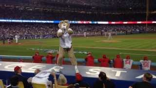 dodgers  Dancing Bear At Dodgers Stadium Game 3 NLCS 2013