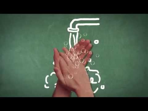 How Germs Spread | Explaining the Science for Kids