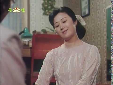 Дело закрыто (КНДР) / Case closed (DPRK) 2011 DVDRip